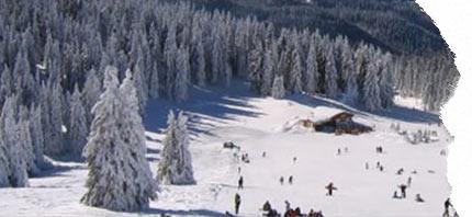 oferte pentru vacante la ski in borovets bulgaria 2020