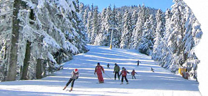 oferte pentru vacante la ski in pamporovo bulgaria 2020