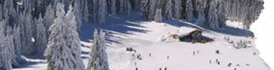 hoteluri cu oferte la ski in borovets bulgaria 2020