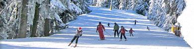hoteluri cu oferte la ski in pamporovo bulgaria 2020